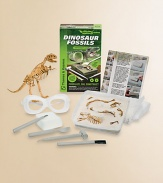 Aspiring paleontologists can fossilize, dig up, and reconstruct a dinosaur skeleton replica with this fascinating kit.Learn how fossils form, are excavated, and how dinosaur bones are pieced togetherRecreate the process of fossilization by burying your dinosaur bones in layers of plaster rock